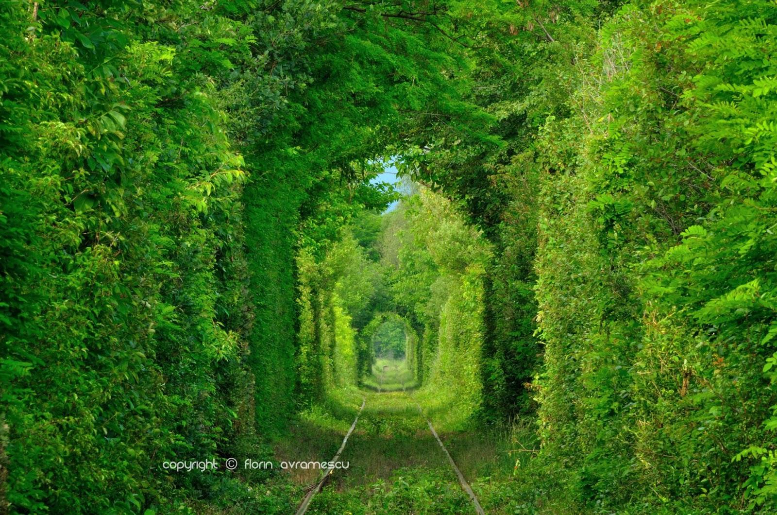 tunelu